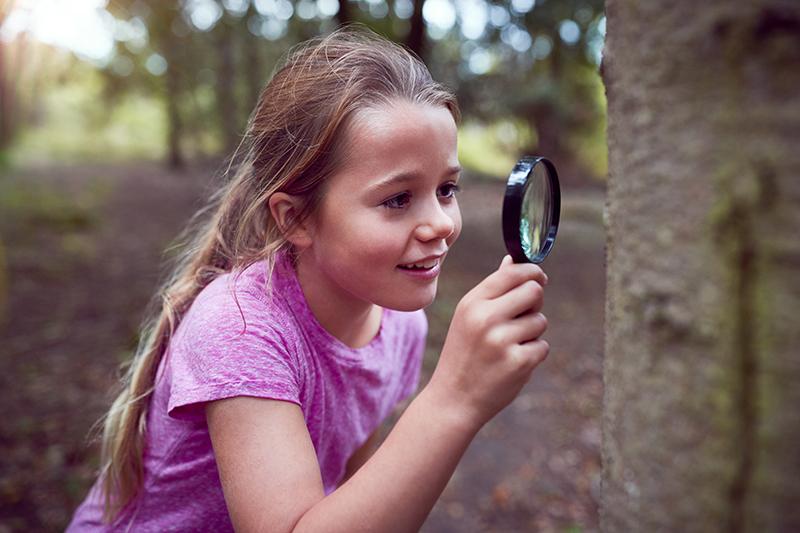 לומדים לגלות את הטבע בסביבה הקרובה בעיניים ביומימטיות I-Site