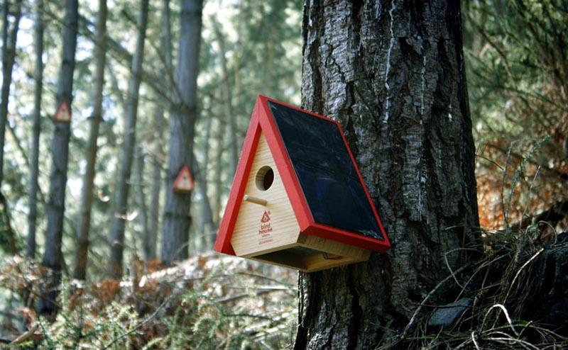 שובך יונים שמחובר לאינטרנט? נכיר מוצר חכם העשוי מעץ הכולל פאנל סולארי, סוללה נטענת, חיישן עשן וחיבור רשת המאפשר לשלוח אות גיאוגרפי לרשויות המקומיות אם תפרוץ שריפה ביע