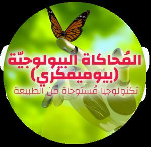 Taasiyeda website pic ar3